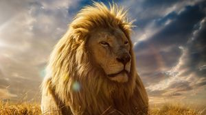 Preview wallpaper lion, king of beasts, mane, savannah