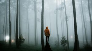 Preview wallpaper man, fog, loneliness, forest, trees