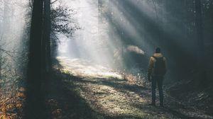 Preview wallpaper man, forest, sunlight, light, fog, nature