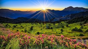 Preview wallpaper meadow, flowers, mountains, grass, dawn