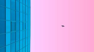 Preview wallpaper minimalism, blue, pink, building, sky, bird
