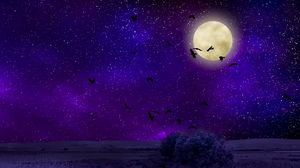 Preview wallpaper moon, moonlight, birds, starry sky, night, photoshop