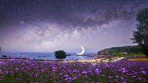 Preview wallpaper moon, starry sky, photoshop, beach, milky way, flowers