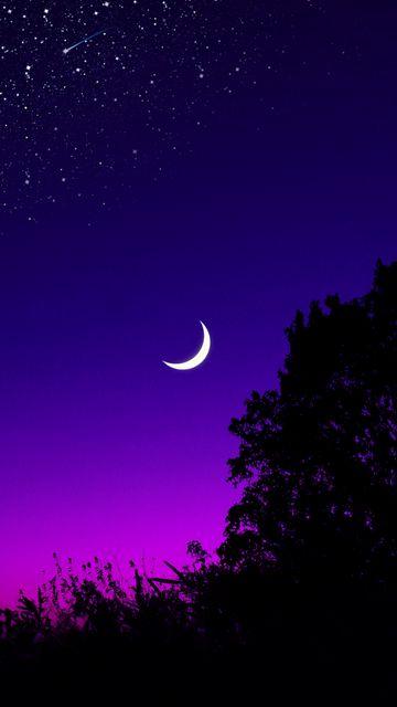 360x640 Wallpaper moon, tree, starry sky, night, stars, dark