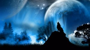 Preview wallpaper moonlight, wolf, fantasy