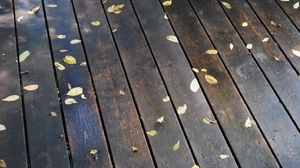 Preview wallpaper morning, floors, rain, leaves, autumn