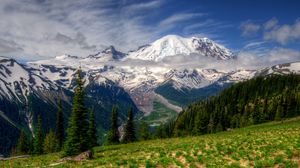 Preview wallpaper mountains, landscape, mt rainier, washington, grass, hdr