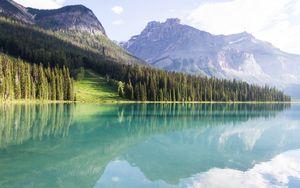 Preview wallpaper mountains, landscape, trees, lake peyto