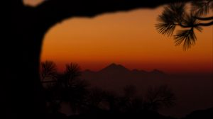 Preview wallpaper mountains, sunset, branch, silhouette