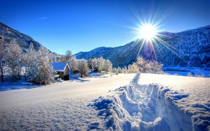Preview wallpaper nature, forest, dawn, winter, mountains