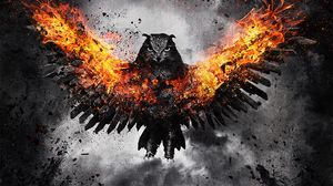 Preview wallpaper owl, bird, fire, wings, flap