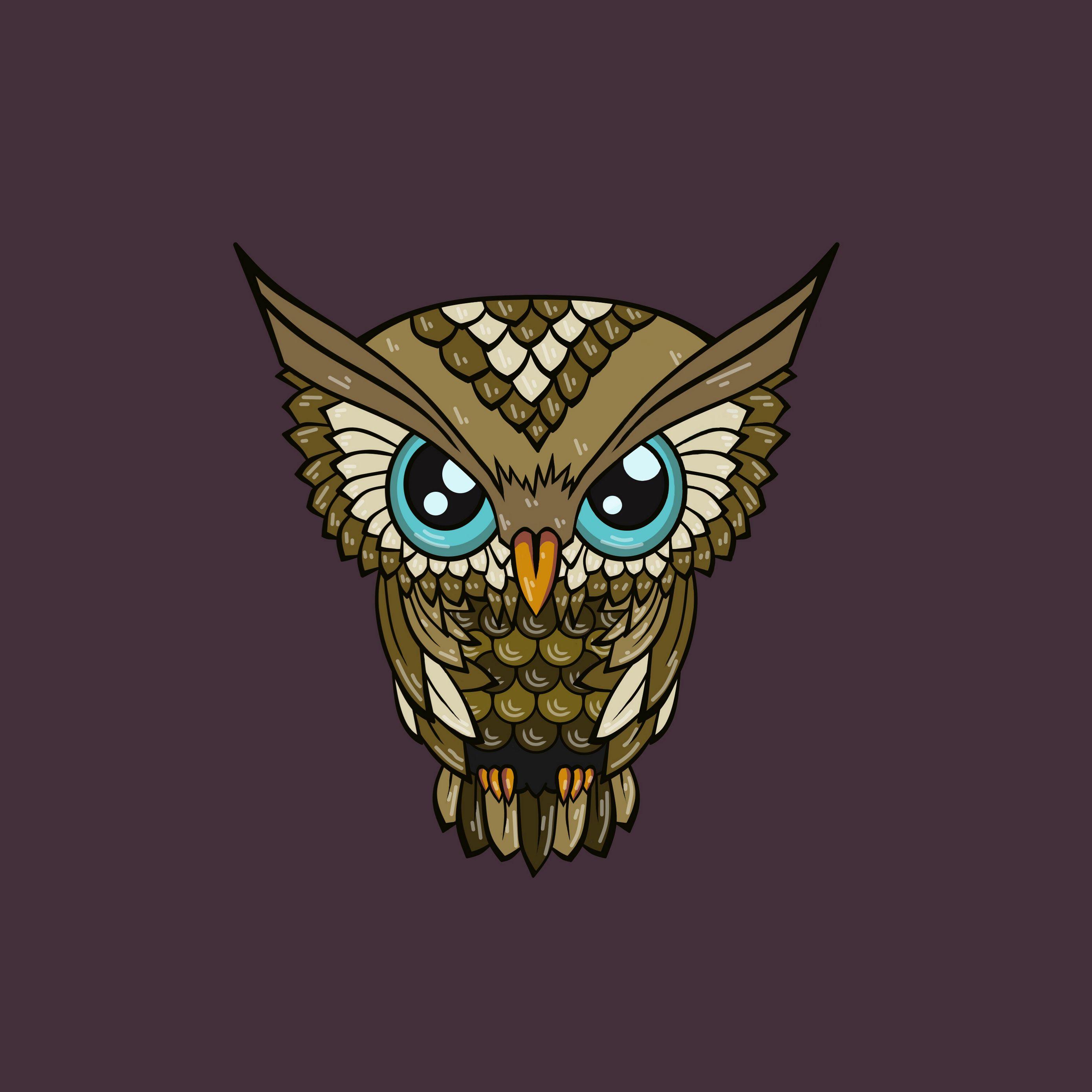 2780x2780 Wallpaper owl, minimalism, art