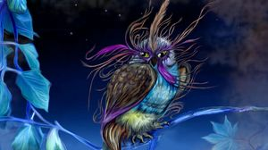 Preview wallpaper owl, pheasant, being, bird, night
