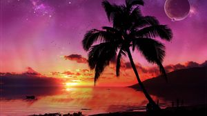 Preview wallpaper palm tree, tree, evening, sky, planet, stars, sea, decline