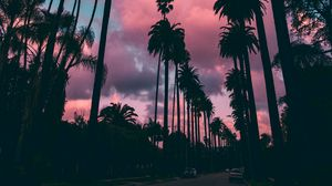Preview wallpaper palm trees, sunset, clouds, tropics, sky, porous