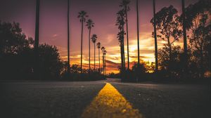 Preview Wallpaper Palms Road Marking Trees Sky