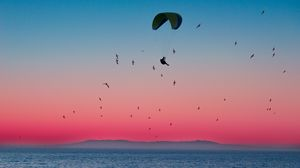 Preview wallpaper paragliding, parachute, sea, flight, birds, horizon