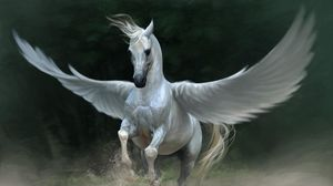 Preview wallpaper pegasus, horse, wings