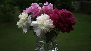 Preview wallpaper peonies, bouquet, vase, close-up