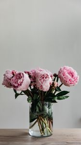 Preview wallpaper peonies, flowers, bouquet, pink, vase