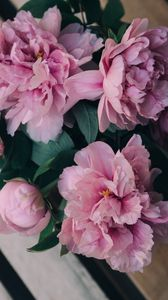 Preview wallpaper peonies, flowers, bouquet, pink