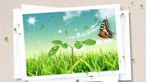 Preview wallpaper photography, butterfly, clipart, design