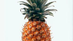 Preview wallpaper pineapple, fruit, tropical, minimalism