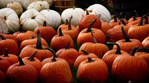 Preview wallpaper pumpkin, autumn, harvest