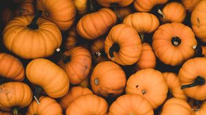 Preview wallpaper pumpkin, ripe, orange, harvest, autumn