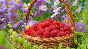 Preview wallpaper raspberries, basket, berries, flowers