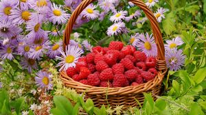 Preview wallpaper raspberries, berries, baskets, flowers
