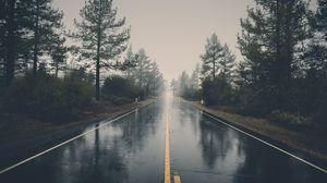 Preview wallpaper road, asphalt, rain, wet, trees, bushes