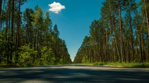 Preview wallpaper road, trees, summer