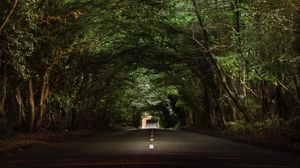 Preview wallpaper road, trees, tunnel, branches, asphalt
