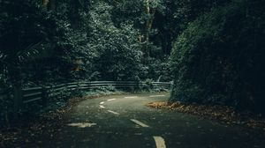 Preview wallpaper road, turn, trees, forest, nature