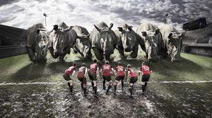 Preview wallpaper rugby, team, rhinos, dirt, field
