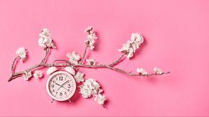 Preview wallpaper sakura, flowers, clock, alarm clock, minimalism, pink