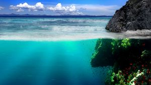 Preview wallpaper sea, coast, rocks, underwater world, vegetation, fish
