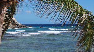 Preview wallpaper sea, waves, palm