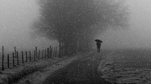 Preview wallpaper silhouette, bw, snowfall, tree, umbrella, path