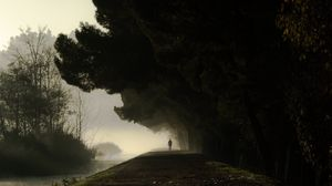 Preview wallpaper silhouette, fog, trees, loneliness, darkness, dark