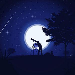 Preview wallpaper silhouette, telescope, night, stars, art, vector