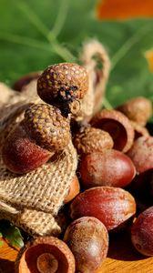 Preview wallpaper acorns, bag, nuts