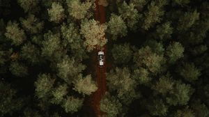Preview wallpaper aerial view, car, forest, trees, road