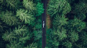 Preview wallpaper aerial view, car, trees, forest