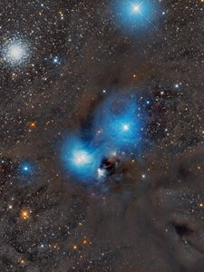 Preview wallpaper anteater nebula, nebula, stars, glare, space