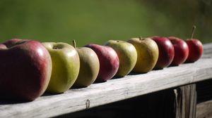 Preview wallpaper apples, fruit, fresh, fence