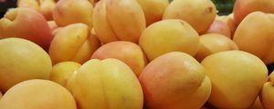 Preview wallpaper apricot, fruit, ripe