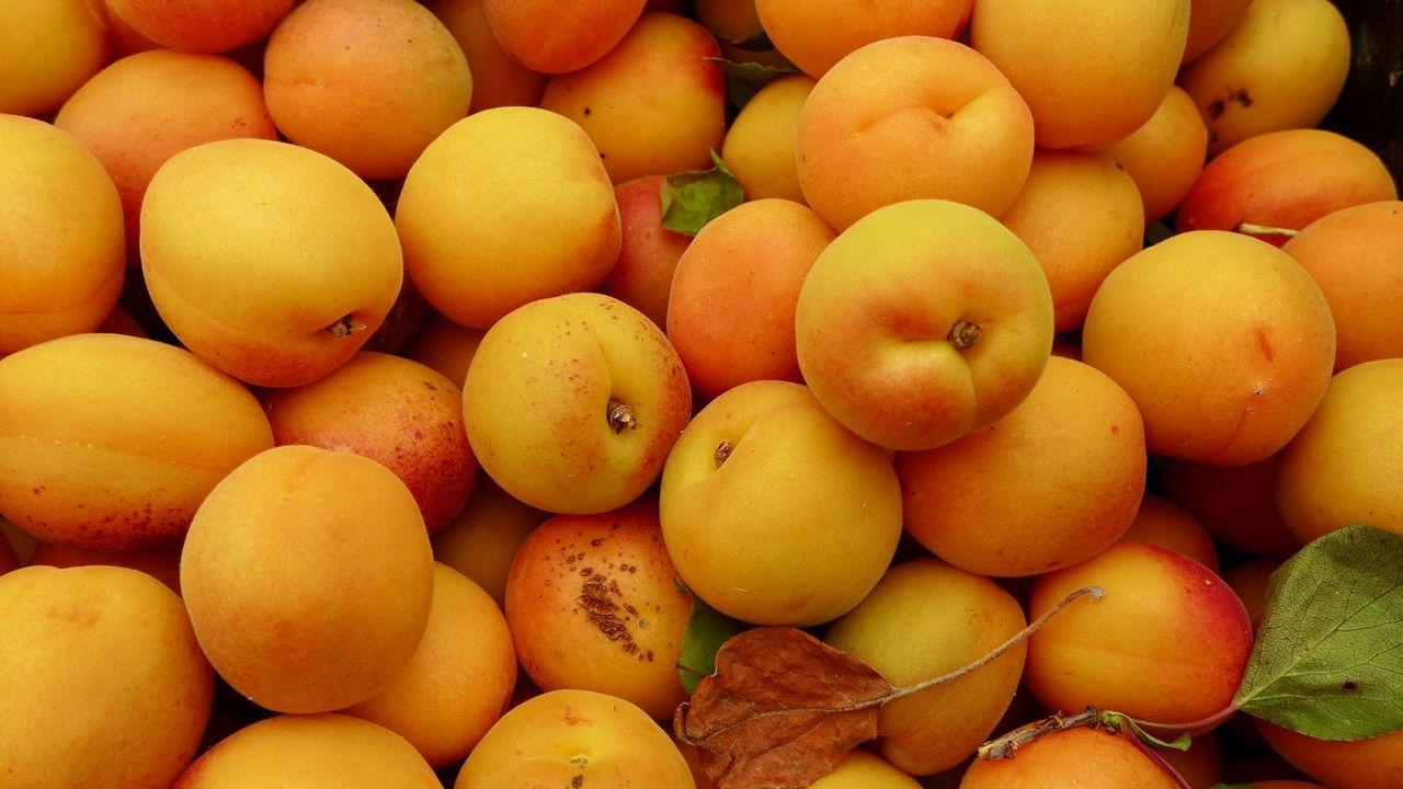 Wallpaperapricots,fruit,fresh,yellow高清壁纸免费下载