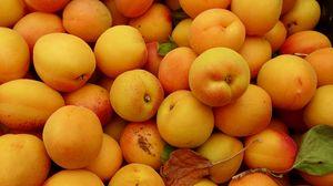 Preview wallpaper apricots, fruit, fresh, yellow